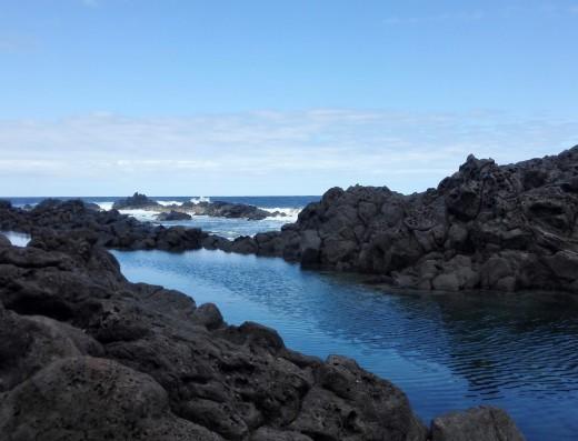 Guide île de La Réunion découverte du bassin sardine à l'étang salé