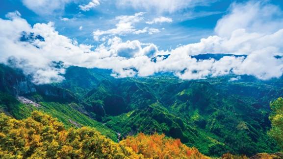 , Récit d'un voyageur à La Réunion